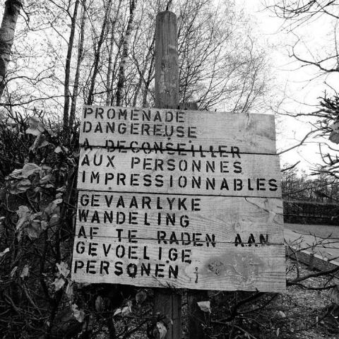 Emotionele wandeling