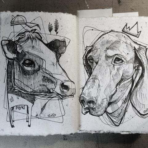 <p>365 days of sketching 31. cow 32. dog</p>